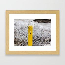 Yellow Pipe Framed Art Print