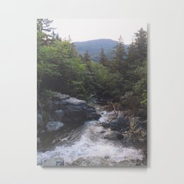 Maine River Metal Print