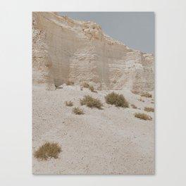 Sleepwalking 3 Canvas Print