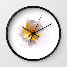 orchid macro IV Wall Clock