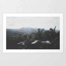 El Yunque Tower (withered) Art Print