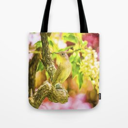 Painted House Wren Tote Bag