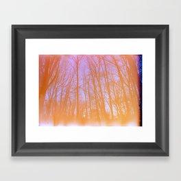 Expired Winter Colors Framed Art Print