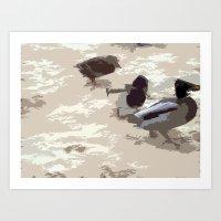 ducks Art Prints featuring Ducks by Kimberley Shaw
