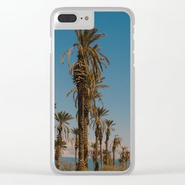 Palm trees in the Negev Desert, Israel Clear iPhone Case