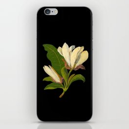 Magnolia Tripetala Mary Delany Delicate Paper Flower Collage Black Background Floral Botanical iPhone Skin