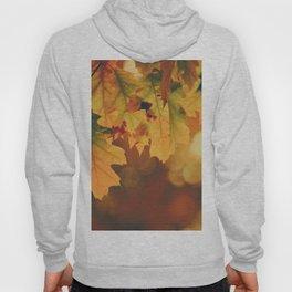 Autumn Leaf (Color) Hoody