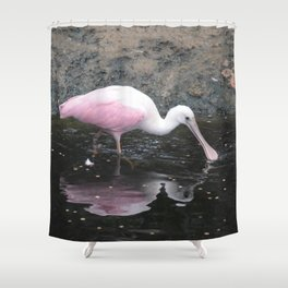 National Aviary - Pittsburgh - Roseate Spoonbill Shower Curtain