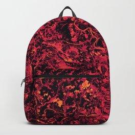 Fuchsia Fields - Ukraine Backpack