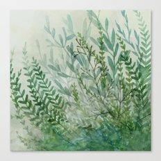 Ferns and Fog Canvas Print