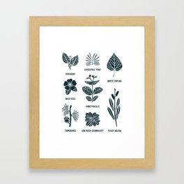 Shrubs & Trees // White & Navy Framed Art Print