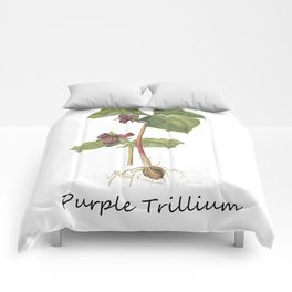 Purple Trillum Comforters