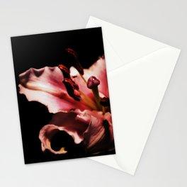 Nyx Series Frame B Stationery Cards