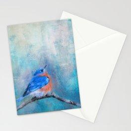 Little Boy Blue Stationery Cards