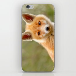 The Face of Innocence .:. Red Fox Kit iPhone Skin