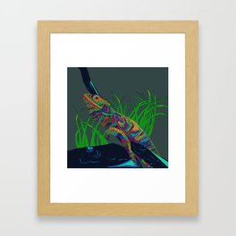 Colorful Lizard Framed Art Print