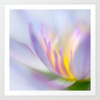 lotus Art Prints featuring Lotus by Eugenie