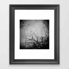 Branches and Bird Framed Art Print