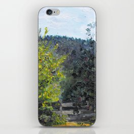 view iPhone Skin