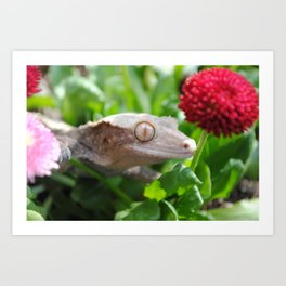 Crested Gecko In Flowers Art Print