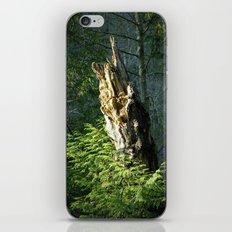 Enchanted Woods iPhone & iPod Skin