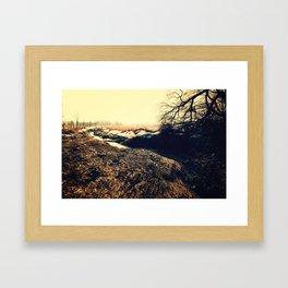 Long Road 2 Spring Framed Art Print