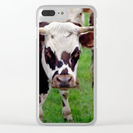 A Cow Stare Clear iPhone Case