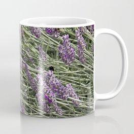 "LAVANDULA ""FRED BOUTIN"" Coffee Mug"