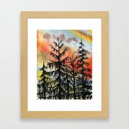Briars Pine, Dusk, Sept 2nd Framed Art Print