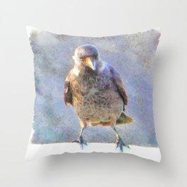 Jackdaw Watercolor Throw Pillow