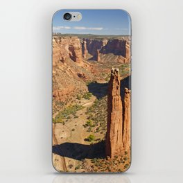 Spider Rock iPhone Skin