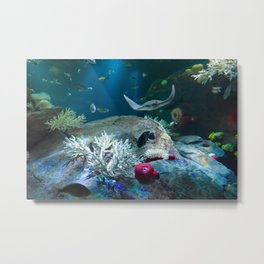 Sting Ray Metal Print