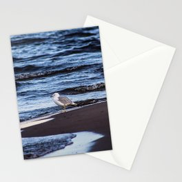 Seagulll by the Waves Stationery Cards