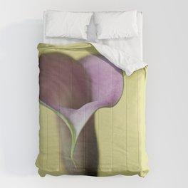 Sincere Comforters