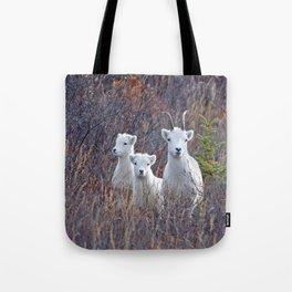 Dall Sheep Ewe With Lambs Tote Bag