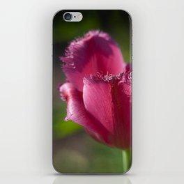 Ragged Tulip iPhone Skin