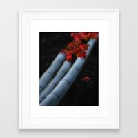 bamboo Framed Art Prints featuring Bamboo by Anne Seltmann