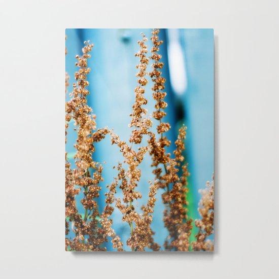 blue and brown Metal Print