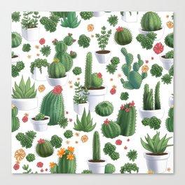 Succulent Cacti Canvas Print