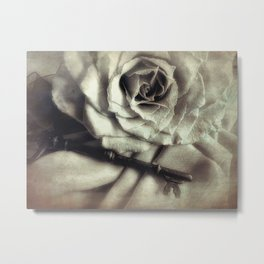 Faded Rose and Old Key Vintage Style Modern Country Cottage Art A130 Metal Print