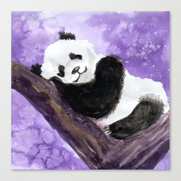 Panda bear sleeping Canvas Print