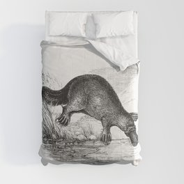 Duck-billed platypus from Adventures of a Gold-Digger (1856) Comforters