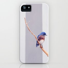Western Bluebird iPhone Case