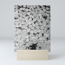 B&W Lily Pads Mini Art Print