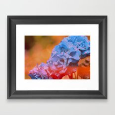 #121 Framed Art Print