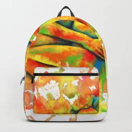 Colorful Climax Backpack
