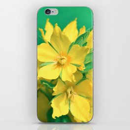 Flower 174 iPhone Skin