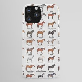 Horse Breeds Of The World iPhone Case