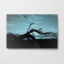 Driftwood in Blue Metal Print