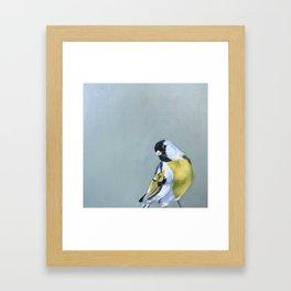 Stay Gold Finchy-Boy Framed Art Print